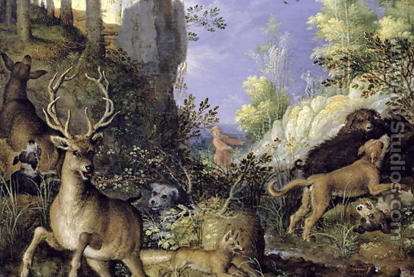 animal scene related keywords - photo #1