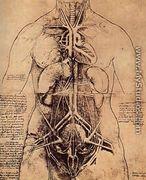Drawing Of A Womans Torso - Leonardo Da Vinci